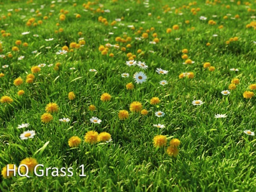 vrayc4d - HQ Grass vol.1 for Cinema4D