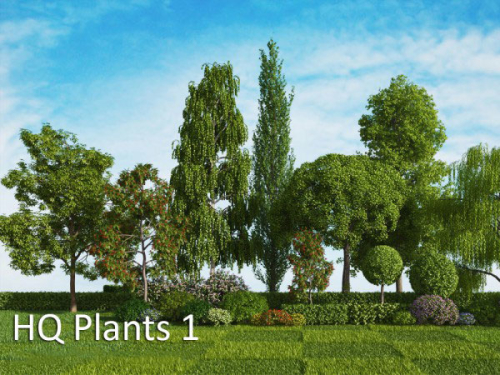 vrayc4d - HQ Plants vol.1 for Cinema4D Part 2