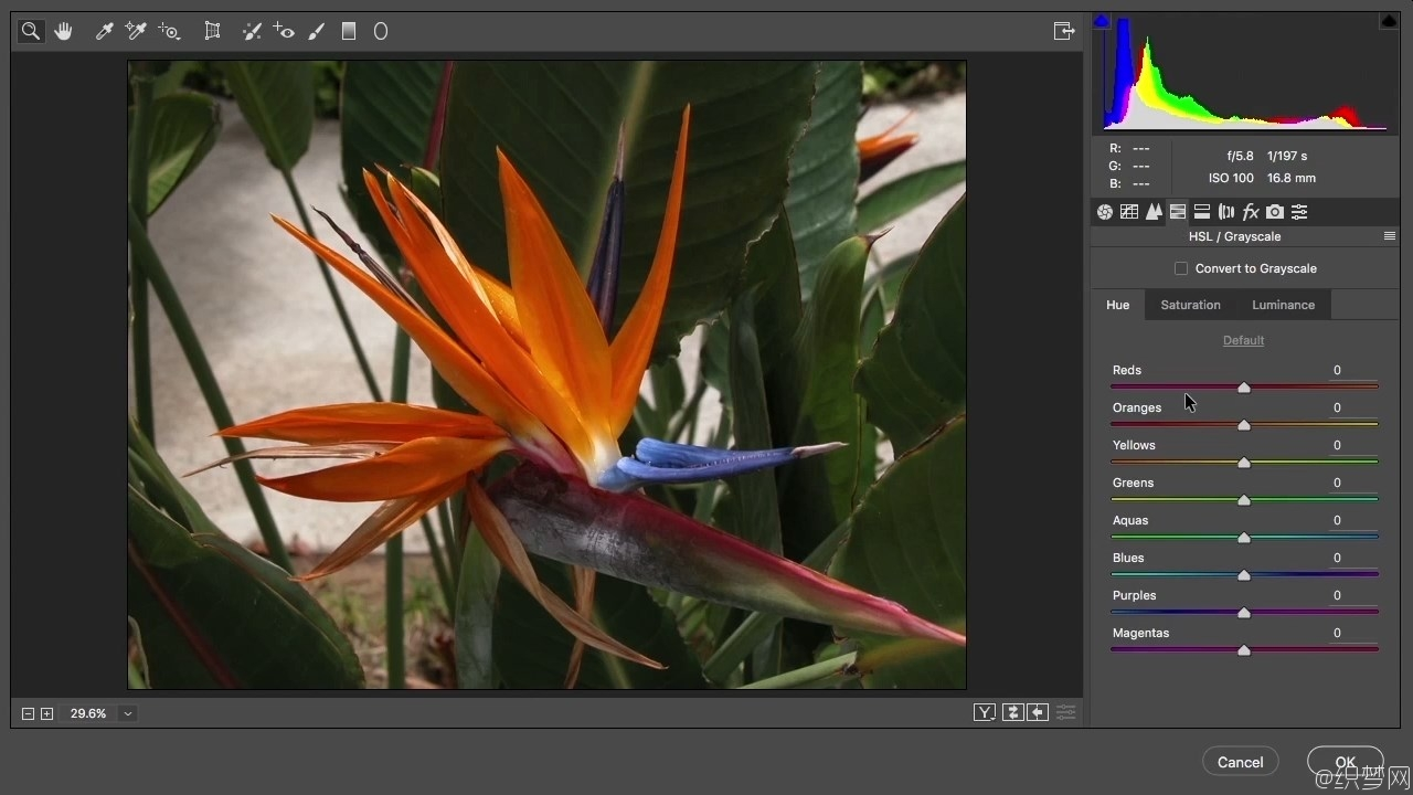 Adobe Camera Raw照片处理流程视频教程 - Adobe Camera Raw Workflow