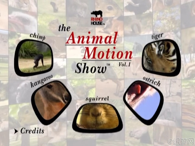 VTS_16_0.VOB(The Animal Motion Show vo1)_20161125_093423.175.jpg