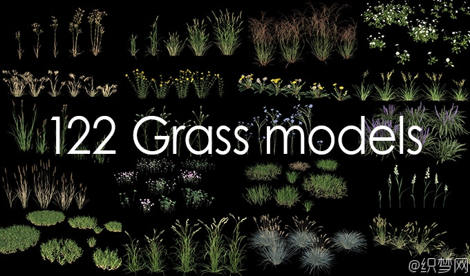 逼真草植被3D模型库下载 - Real Grass 3Ds Max GrowFX - Vizpark
