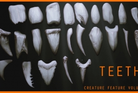 牙齿3D模型笔刷预设素材 – TEETH – Zbrush 24 Assorted Teeth IMM Brush